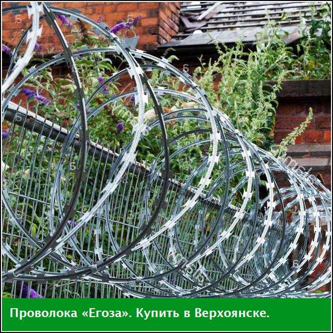 Проволока «Егоза», купить в Верхоянске (Якутия)
