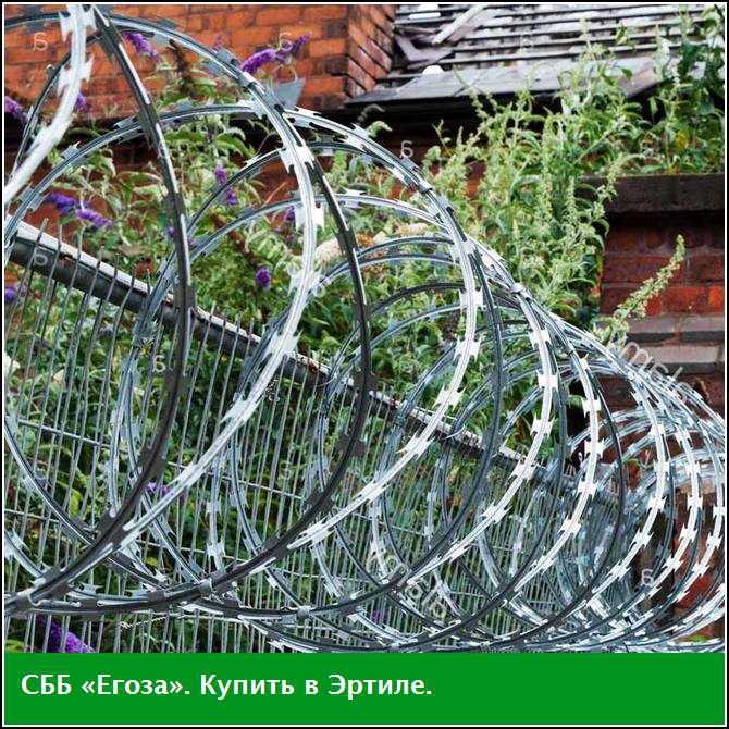 Купить СББ «Егоза», Эртиль, Воронежская область
